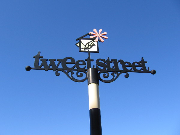 Tweet Street sign on Date Street in San Diego's Cortez Hill neighborhood. Many artistic birdhouses line the narrow urban park.