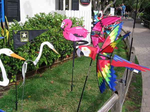 I've arrived at Seaport Village. Okay, I'm certain these are real birds--maybe. Looks like a parrot, flamingo and some egrets.
