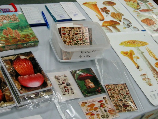All sorts of arts and crafts, books and fascinating stuff was for sale at the mushroom fair.