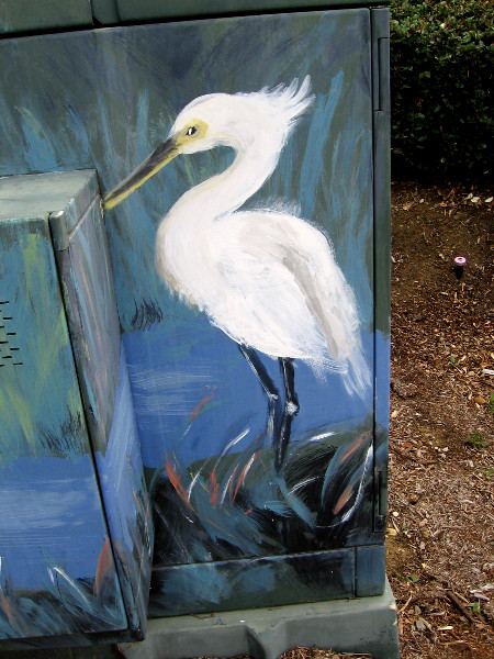 A snowy egret beautifully painted on a Mission Valley transformer box.