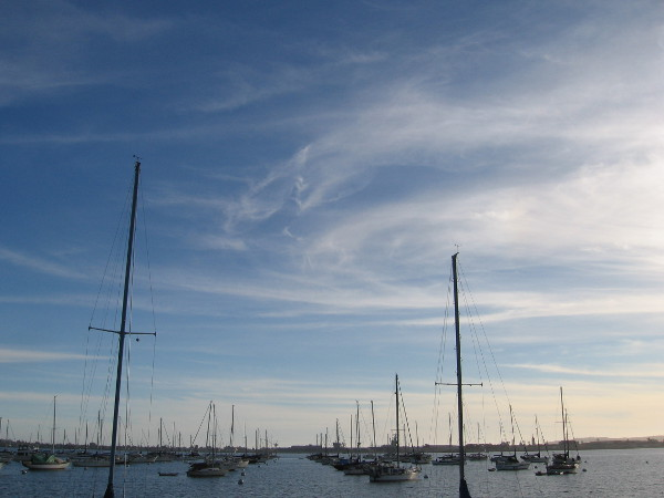 A field of sailboat masts under beautiful wispy afternoon clouds.