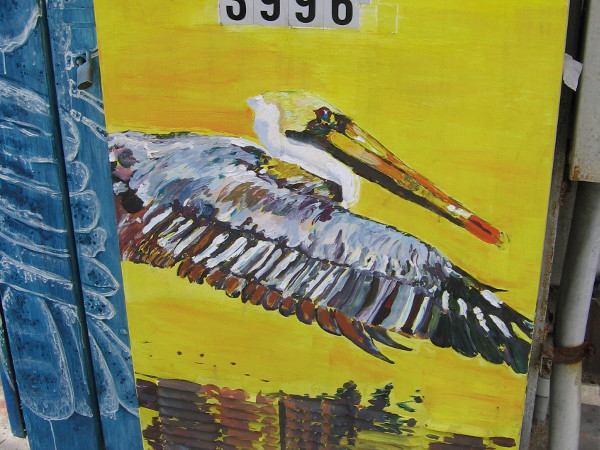 A pelican on an electrical box on Mission Boulevard in Mission Beach.