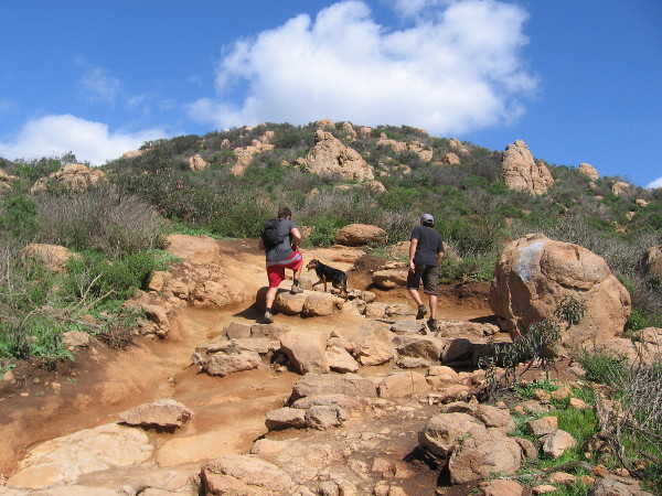 Many hikers had dogs, who enjoyed the hike, too. The scrubby vegetation and exposed boulders are common in the mountains and hills around San Diego.