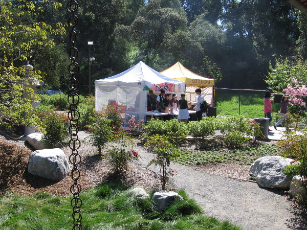 I was drawn to these tents in the garden, where there was even more food!