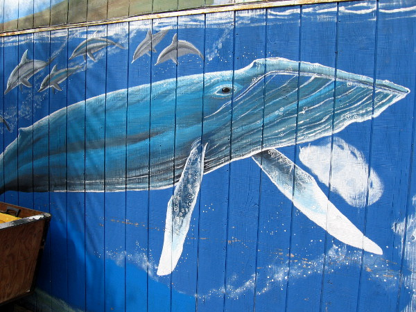 A migrating gray whale and pod of dolphins are part of the previously shown underwater mural.