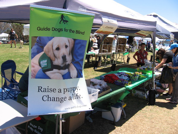 Guide Dogs for the Blind. Raise a puppy. Change a life.