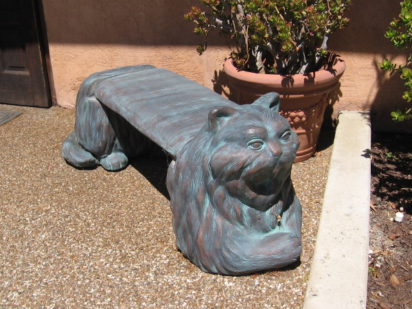A cool cat bench outside the entrance of the Coronado Veterinary Hospital.
