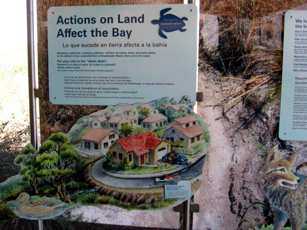 Actions on land affect San Diego Bay. Pollution runoff flows via creeks, rivers and storm drains into the marsh then out to the ocean.