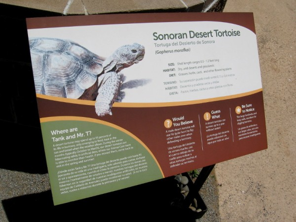 Sign near an enclosure describes the Sonoran desert tortoise.