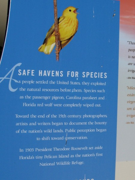 National Wildlife Refuges are safe havens for species. The first one, at Pelican Island in Florida, was created in 1903 by Theodore Roosevelt.