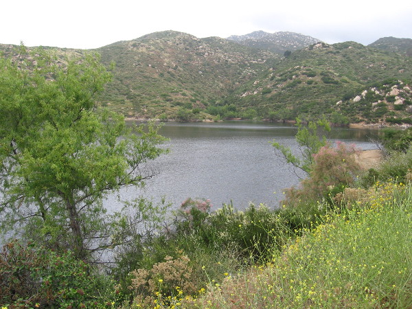 Starting up the Lake Poway Trail. The natural scenery is beautiful.