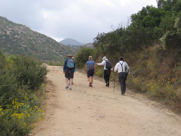More hikers climbing skyward.