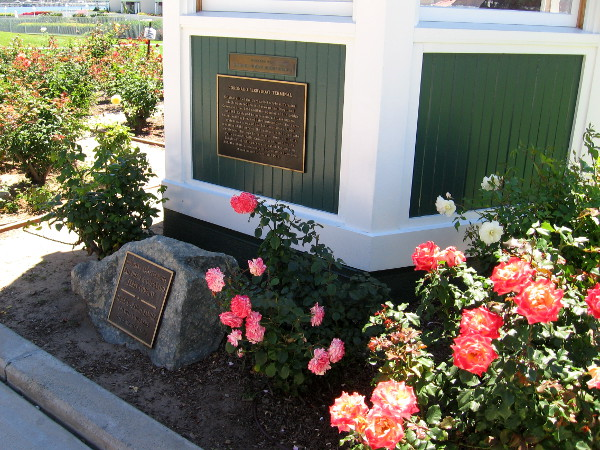 Roses bloom near the old ticket booth of the original Coronado ferry.