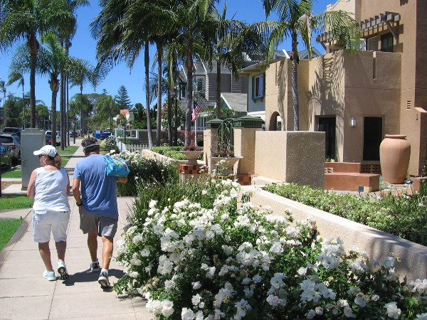 Walking west along Orange Avenue. Coronado is pleasant, friendly and inviting wherever you roam.