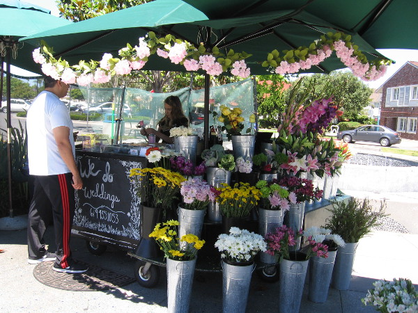 A flower vendor brightens Orange Avenue.