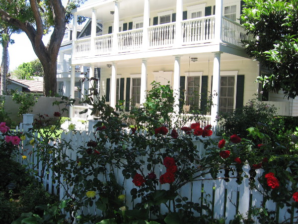 Flowers along fence of a pleasant house in affluent Coronado.