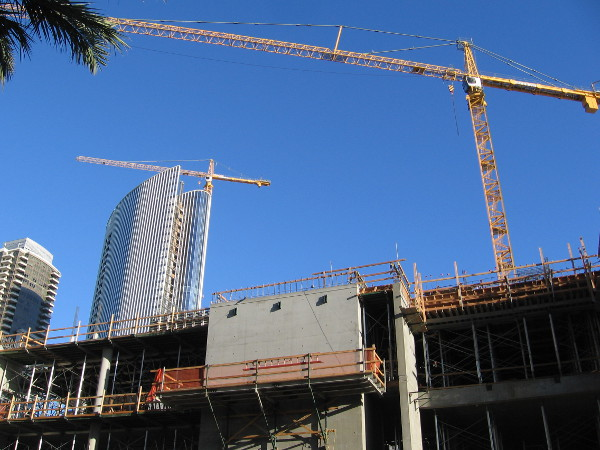 Lots of cranes are in San Diego's blue sky! A dynamic city grows and continues to evolve.