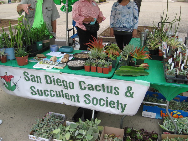 So did the San Diego Cactus and Succulent Society!