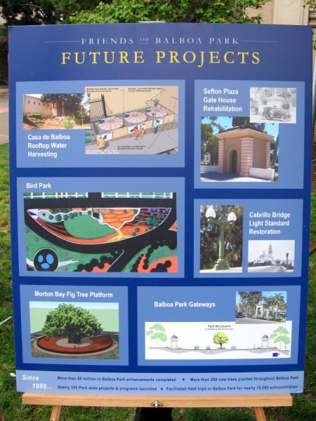 The Friends of Balboa Park has a number of great future projects. I like the idea of a platform around the giant now-fenced Moreton Bay Fig near the Natural History Museum. A platform would allow visitors to closely approach the majestic giant, while preventing the pressure of feet from compressing the soil and endangering the roots.