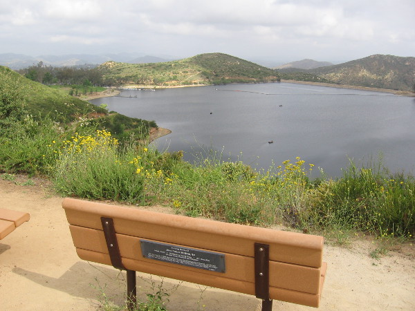 During my short hike I turned around at this bench. It's dedicated to John Finley McMinn, naval aviator who won the Distinguished Flying Cross.