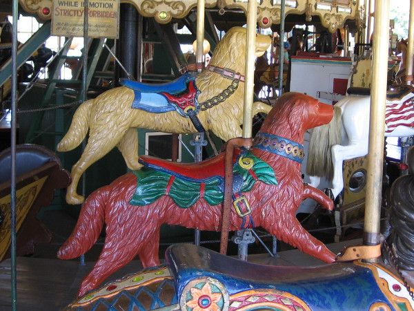 Two dogs run in circles at the Balboa Park Carousel.