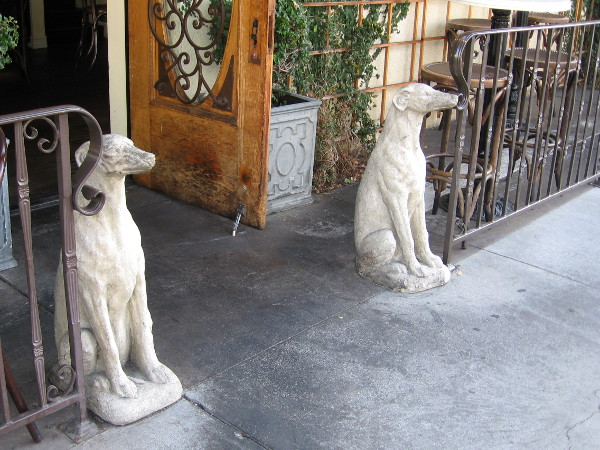 Two dogs stand guard on a downtown San Diego sidewalk.