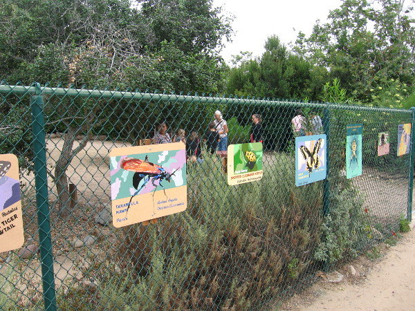 Colorful paintings of insects and other wildlife on a fence behind the Nature Center at Tecolote Canyon Natural Park.