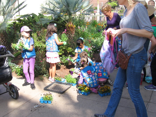 Daisy Girl Scouts plant new flowers by the reflecting pool.