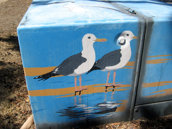 Electrical box on Shelter Island Drive has two seagulls.