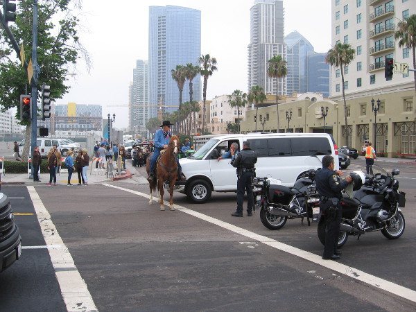At Harbor Drive and Pacific Highway, everybody gets ready for the big cattle drive!