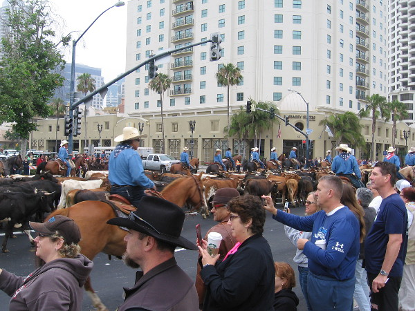 Hundreds of people lined the streets to watch the unusual spectacle. It seemed like the Old West was being relived in San Diego!