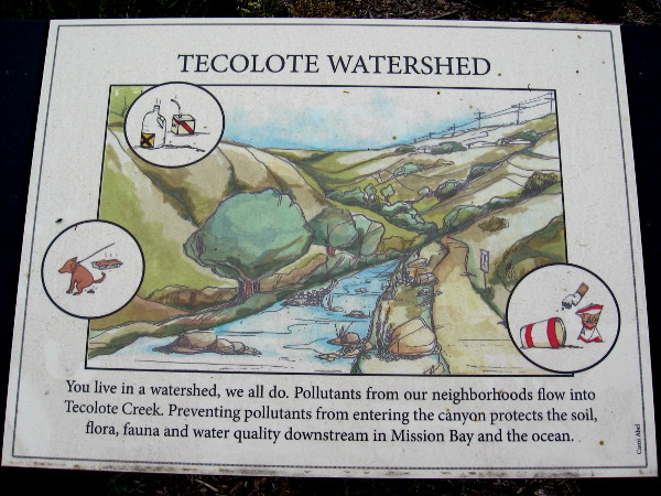 A sign depicts the Tecolote Watershed. Pollutants can flow down the creek and enter the soil, Mission Bay and eventually the Pacific Ocean.