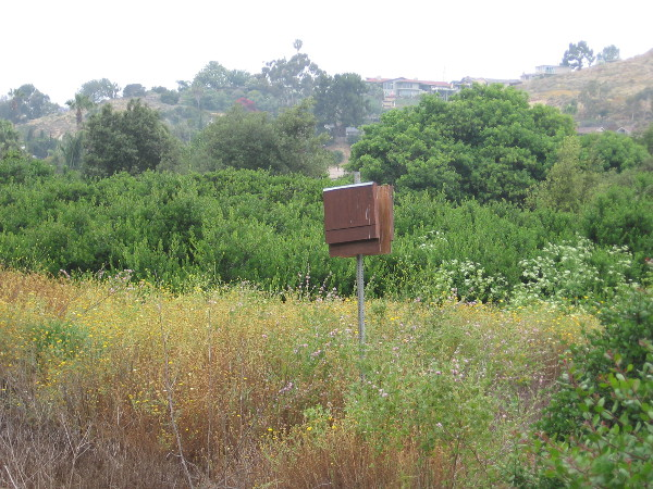 I believe this house on a post is for bats. I've seen similar boxes in other open space parks around San Diego.