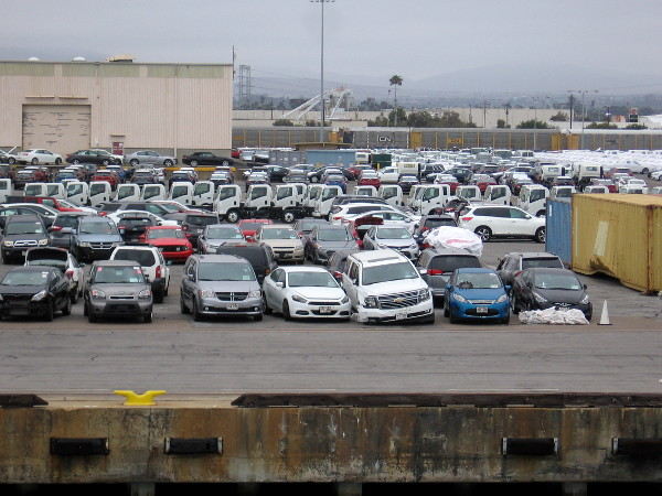 These totaled cars arrived from Hawaii! They're headed to San Diego salvage yards.