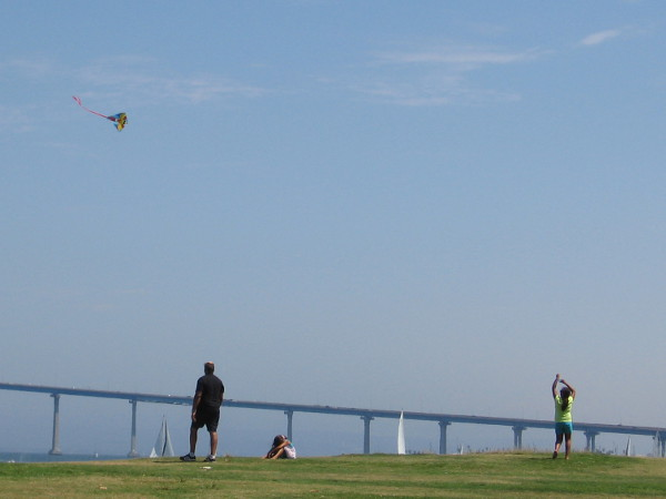A kite high in the blue sky.