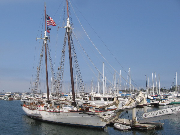 The schooner Bill of Rights, based in Chula Vista, can be chartered for fun adventures. It often participates in San Diego's annual Festival of Sail.