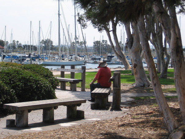 A person sitting on a bench in Chula Vista Bayfront Park enjoys some shade. Nearby boats float gently on the water.