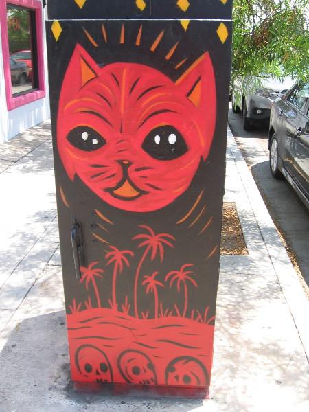A cool cat.