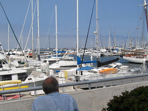 Relaxing by the picturesque marina on a quiet, peaceful morning.