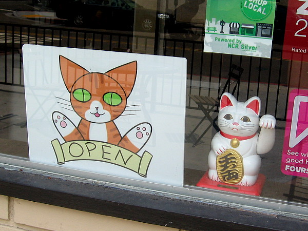 Two cats in one window!