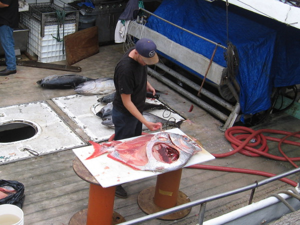 Fresh opah is prepared on the fishing vessel Pacific Horizon docked at the Tuna Harbor Dockside Market!