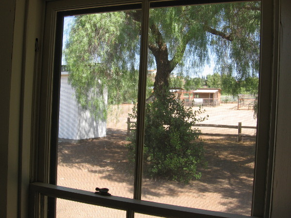 Inside a room that contains museum-like exhibits, looking north out a window at various small structures on the ranch, including a chicken coop and goat pen.
