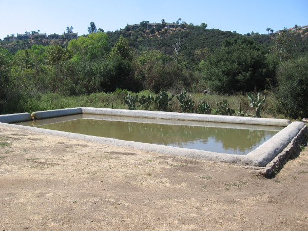An artificial pond south of the ranch house was filled with water from the nearby spring house for irrigation of a nearby grove.