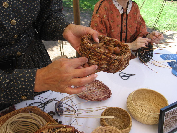 The local Kumeyaay would use willow baskets to protect their gathered acorns and other food from insects.