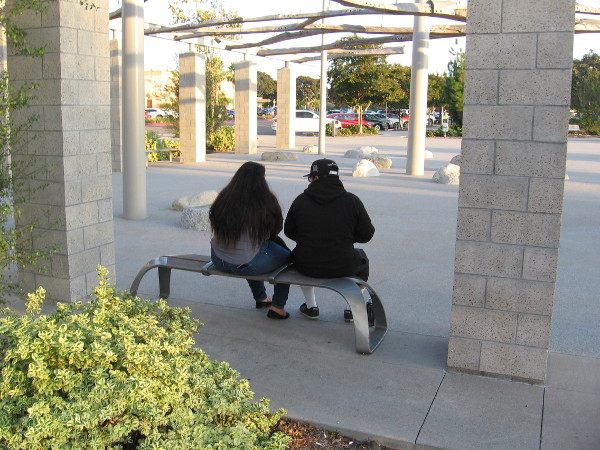 A couple sits on a bench inside a work of public art, The Riparium, in a corner of Ruocco Park.