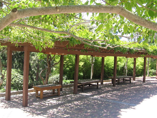 A tranquil and shady place to sit on a summer day in the Japanese Friendship Garden. I worked for a while on a short story here.