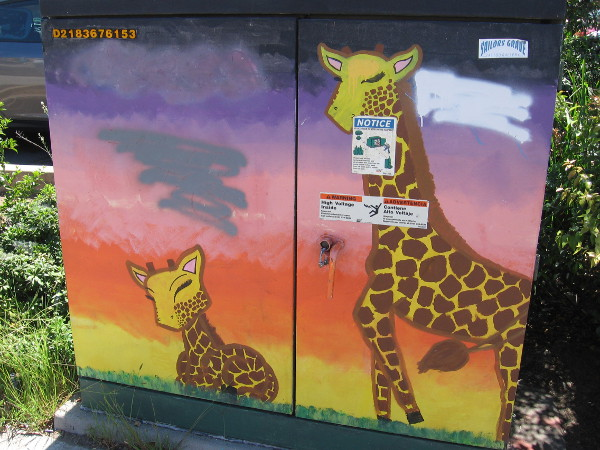 Two giraffes.