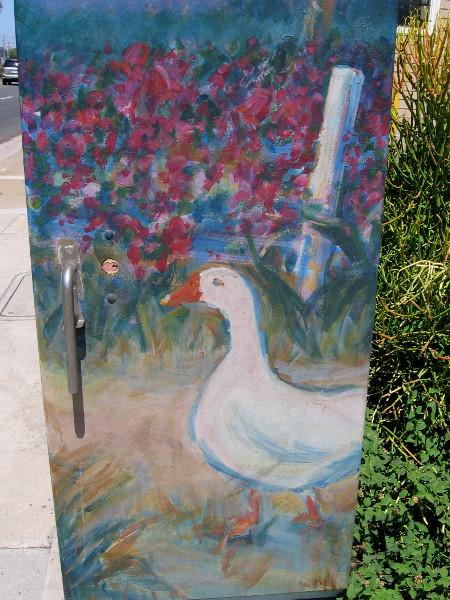 A white goose.