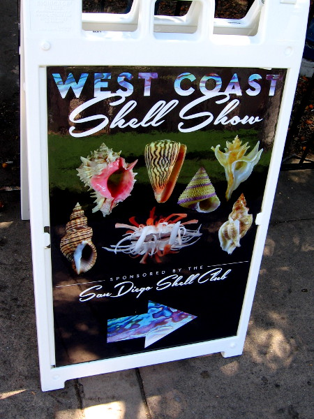 The West Coast Shell Show was presented in Balboa Park by the San Diego Shell Club.