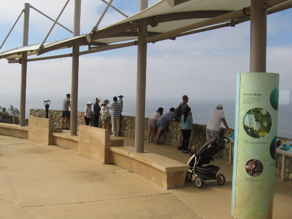 Visitors to Cabrillo National Monument scan the watery horizon for ships and whales.